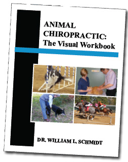 Animal Chiropractic: The Visual Workbook by Schmidt